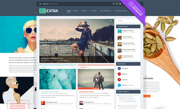 Download Free Extra v2.2 - Elegantthemes Premium Wordpress Theme ...