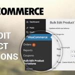 Download Free Woocommerce Bulk Edit Product Variations & Prices v2.7