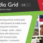 Download Free Media Grid v6.2 - WordPress Responsive Portfolio