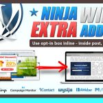 Download Free Ninja Widget Extra Add-on v1.3