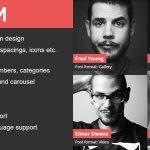 Download Free DV Team v1.7.1 - Responsive Team Showcase Plugin