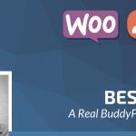 Download Free Besocial v3.7 - BuddyPress Social Network & Community