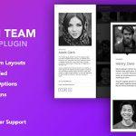 Download Free The Team Pro v1.1.4 - Team Showcase WordPress Plugin