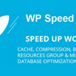 Download Free WP Speed of Light v2.4.1 – Speed Up WordPress Pro