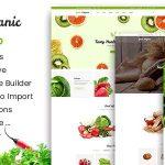 Download Free Green Organic v2.6 - Organic Store & Bakery Theme