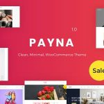 Download Free Payna v1.0.3 - Clean, Minimal WooCommerce Theme