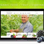Download Free FreshFood v2.0.1 - Multi Store Responsive WordPress Theme